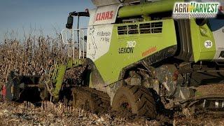 Download Claas Lexion 780 TT stuck in MUD Video