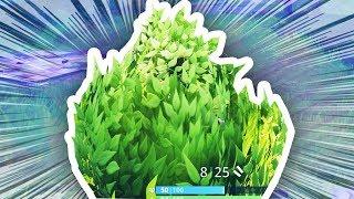 Download I AM A BUSH.. in fortnite: battle royale!! Video