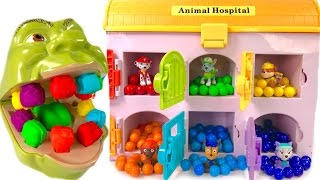 Download Best Learning Colors for Children - Paw Patrol Hospital Shrek Eats Rainbow Gumballs Teeth Change Video