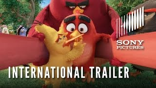 Download THE ANGRY BIRDS MOVIE - Official International Trailer (HD) Video