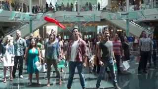 Download Les Misérables Flash Mob - Orlando Shakespeare Theater Video