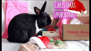 Download Unboxing our first Christmas Gift!   Happy Bunny Club Video