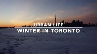 Download Urban life- Winter in Toronto Video