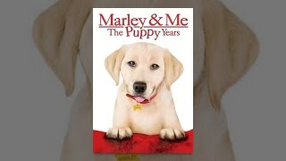 Download Marley & Me: The Puppy Years Video