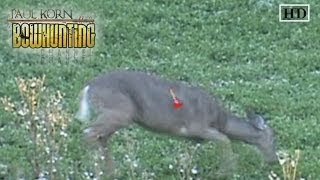 Download Perfect Arrow Placement on Deer double lung shot despite ducking the arrow or string Video