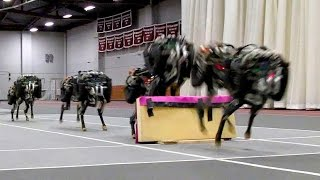 Download 5 New Technology 2016   Military Robots   Awesome Robots Video