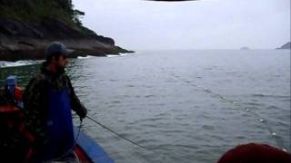 Download Pesca de Robalo 16 Video