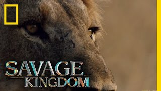 Download Matsumi: The New Queen | Savage Kingdom Video