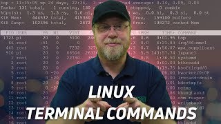 Download 10 Linux Terminal Commands for Beginners Video
