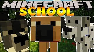 Download Minecraft School : VISITING THE PET STORE! Video