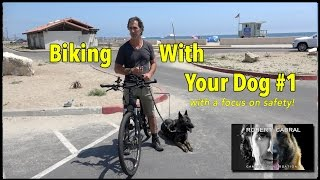 Download Biking With Your Dog - The ″How To″ Video