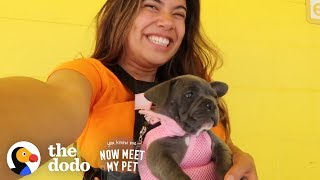 Download Raising A Dog Is Like Raising A Human With Adelaine Morin | The Dodo You Know Me Now Meet My Pet Video