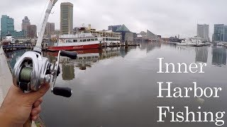 Download Hilarious DRUG ADDICT Stalks Me while I Fish!!! (Urban Bank Fishing at the Inner Harbor) Video