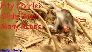 Download Mom Bertha Feel Regret To Make A Mistake Not Give Up For Hurt Baby Charlee Cry Fall Down many Round. Video