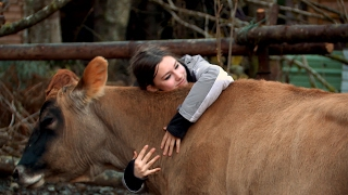 Download Bush Cows Are More Affectionate Than You Might Think | Alaskan Bush People Video