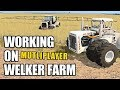 Download WORKING ON WELKER FARMS | Multiplayer Farming Simulator 17 - Ep1 Video