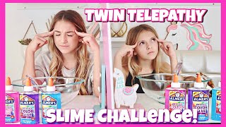 Download Twin Telepathy Slime Challenge | 3 color slime | Quinn Sisters Video
