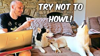 Download Try Not to Howl! Video