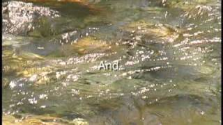 Download From the River to the Ends of the Earth - The Destiny of Canada Video