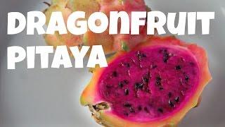 Download DRAGONFRUIT Red Fleshed PITAYA | Fruity Fruits Video
