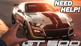 Download Picking The Color Of My 2020 SHELBY GT500! *NEED YOUR HELP* Video