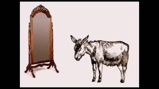 Download EL BURRO Y EL ESPEJO (Cuentacuentos) Video