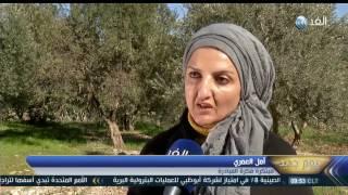 Download يوم جديد| مبادرة شبابية أردنية لزراعة ثلاثين ألف متر من الأشجار الحرجية Video