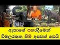 Download Bellanwila Pansale Atha Paharadi Wimalarathana Himi Apawath Wei Video