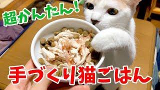 Download 超かんたん!鶏胸肉を使って手作り猫ごはんを作ってみた Video