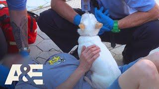 Download Live Rescue: Day Drinking Buddy (Season 2) | A&E Video