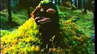 Download Alaska: Glacier Bay | Skyriver Films | documentary | 1993 | VHS rip Video
