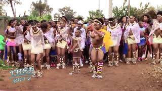 Download Zulu beauty (umemulo) Video