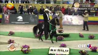 Download AGROEXPO 2017 PASO FINO COLOMBIANO Video