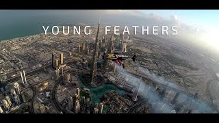 Download Jetman Dubai : Young Feathers 4K Video