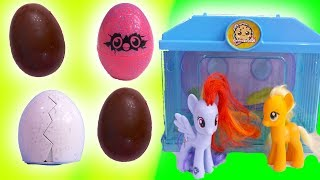 Download Hatching Baby Chicks + Surprise Chocolate Eggs with My Little Pony - Toy Video Video