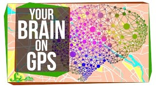 Download This Is Your Brain on GPS Video