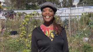 Download QuickBites: Urban Gardens Video