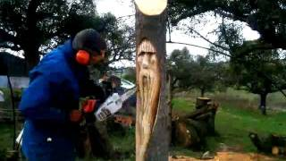 Download tree wizard chainsaw carving ( time lapse ) Video