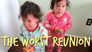 Download The WORST Reunion Ever - September 26, 2016 - ItsJudysLife Vlogs Video
