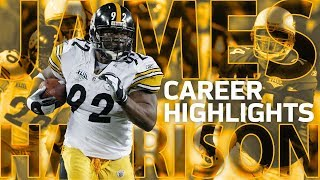 Download James Harrison's FULL Career Highlights: From Undrafted to All-Pro | NFL Legends Highlights Video