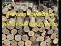 Download Homestead Work ~ Garden Harvest ~ Logging Forest Video