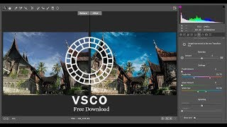 100 + photoshop camera raw presets free download Free
