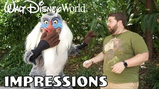 Download Rafiki Was Shocked!! - Disney World Impressions Video