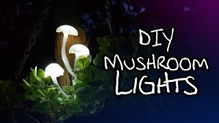 Download Make Your Own Magical Mushroom Lights Video