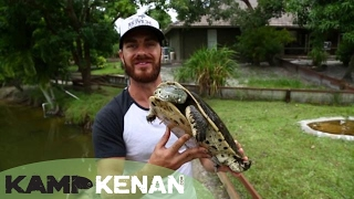 Download Argentine Sideneck Turtle! Kamp Kenan Bonus Video
