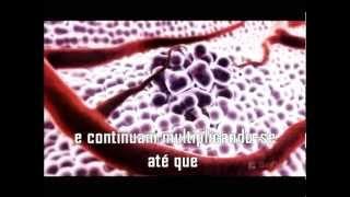 Download PSICOLOGIA NO TRATAMENTO DO CÂNCER / Mini Documentário Psico-Oncologia / HUMANIZAÇÃO Video