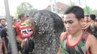 Download jaranan & barong ''Gempar Budoyo'' keblak - keblak Video
