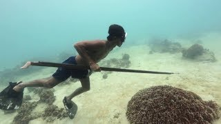 Download EARTH DAY DIARY – Badjao Spearfishermen, Spearfishing in Bohol, Philippines Video
