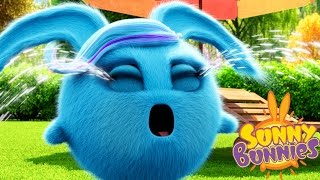 Download Cartoons for Children | Sunny Bunnies SUNNY BUNNIES CRYING BUNNY | Funny Cartoons For Children Video