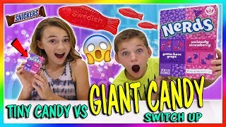 Download TINY CANDY VS GIANT CANDY SWITCH UP | We Are The Davises Video